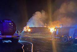Ogromny pożar. Strażacy walczyli z żywiołem 12 godzin