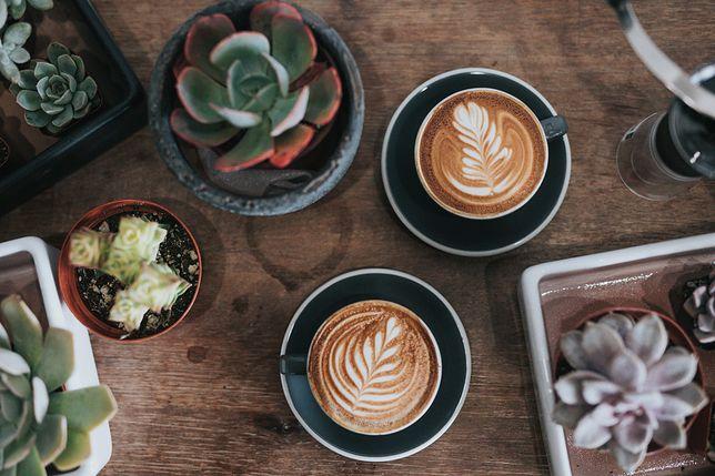 Nic nie stawia na nogi tak, jak świeżo zaparzona kawa