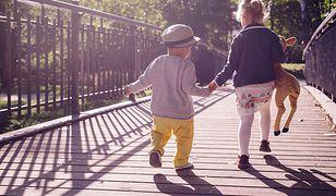 Dzień Dziecka 2020. Zabawki wzięte pod lupę Inspekcji Handlowej i UOKiK-u