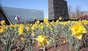 77. rocznica powstania w getcie warszawskim. Polacy uczcili pamięć poległych za pośrednictwem internetu