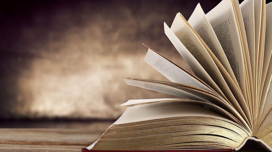 Bookviser: dobry czytnik e-booków dla Windows Phone i Windows 8, przez dobę dostępny za darmo