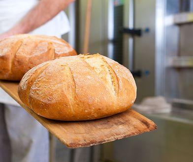 Chleb prawdopodobnie wkrótce zdrożeje. Mocno w górę poszły ceny zbóż, a i wynagrodzenia piekarzy też nie stoją w miejscu