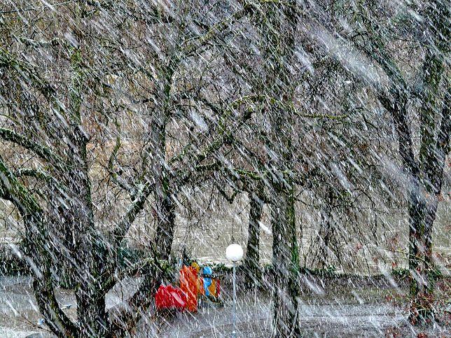 Wichury, śnieżyce, tysiące gospodarstw bez prądu. Załamanie pogody w Polsce