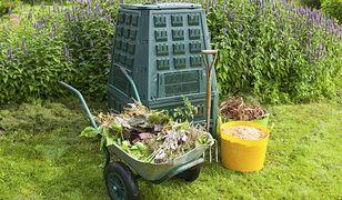 Kompostownik powinien znaleźć się w każdym ogrodzie