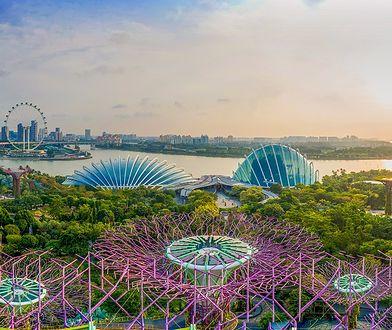 Piękno i nowoczesność. Zaplanuj bezpieczne wakacje na wybrzeżach Singapuru