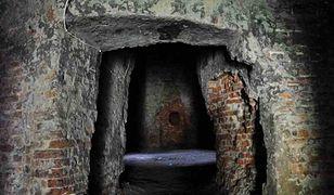 Poznaj Elizeum i piwnice staromiejskie