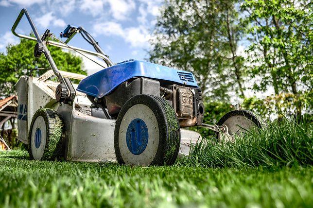 Co zrobić ze skoszoną trawą