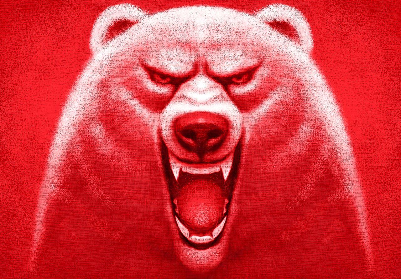 Google ostrzega. 14 tysięcy użytkowników Gmaila jest zagrożonych - Niedźwiedź