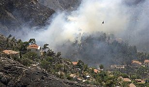 Legia Cudzoziemska wywołała pożar na setkach hektarów