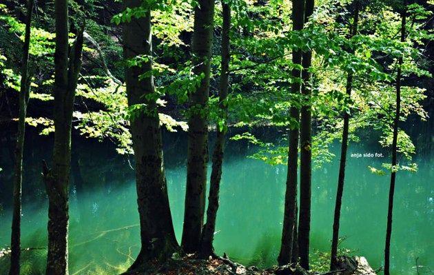Jeziorka Duszatyńskie w Bieszczadach