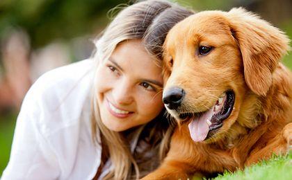 Rynek produktów dla zwierząt domowych w Polsce zwiększy się o 5 proc.