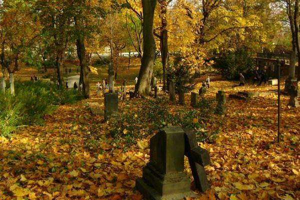 Jak znaleźć grób w Poznaniu? Skorzystaj z wyszukiwarki