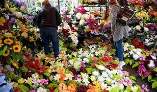 Warszawa sprzedaż kwiatów i zniczy