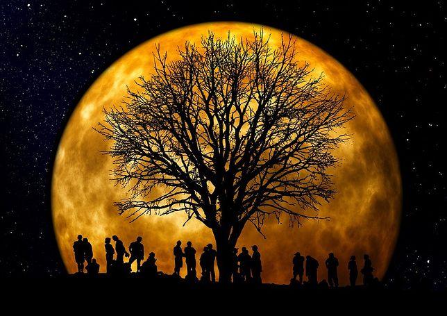W poniedziałek będzie można zaobserwować Superksiężyc