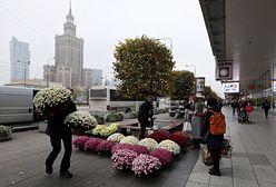 """Warszawa. """"Kup pan chryzantemę"""". Morze kwiatów w centrum stolicy"""