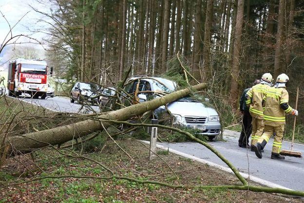 Zniszczenia po wichurach w Polsce. Dziewięć ofiar huraganu Niklas w Europie