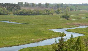 Dolina rzeki Tolensee