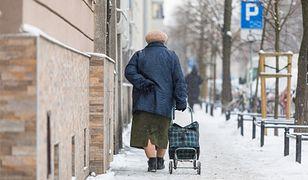 Od marca 2019 minimalne emerytury mają wzrosnąć z 1029 zł do 1100 zł.