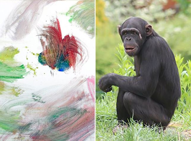 ZOO zlicytuje prace namalowane przez... szympansicę