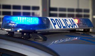 Policja i prokuratura nie wykluczają dalszych zatrzymań