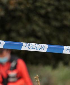 Tragedia pod Poznaniem. Nowe informacje ws. śmierci policjantki i jej synka