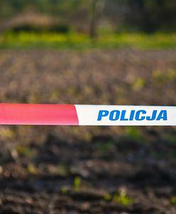 Dolnośląskie. Wypadek na DK8. 7 osób rannych, w tym dzieci