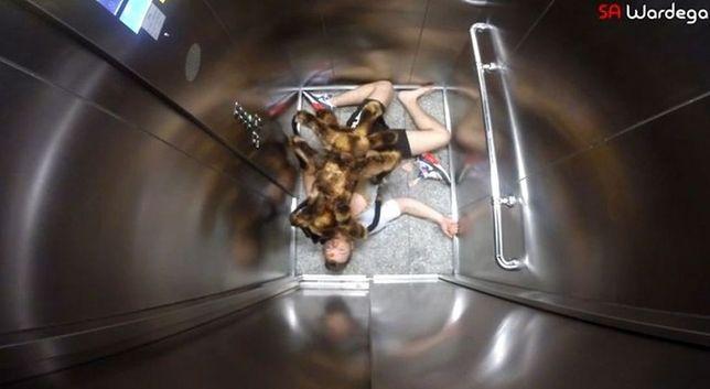 Wardęga i jego pies-pająk najpopularniejszym filmem Youtube'a na świecie w 2014 roku!