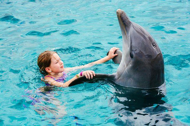Nie będzie zabaw z delfinami. TripAdvisor chce chronić morskie ssaki