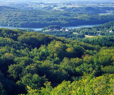 """Widok z Wieżycy, nazywanej """"królową"""" północnej Polski, jest bajkowy"""