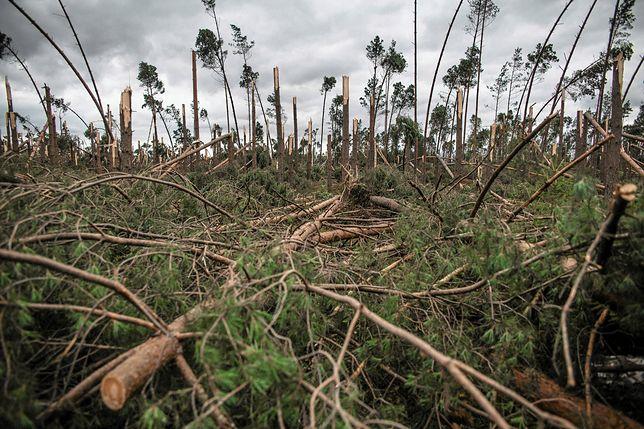 Likwidacja skutków klęski kosztowała dotychczas niemal 712 mln zł