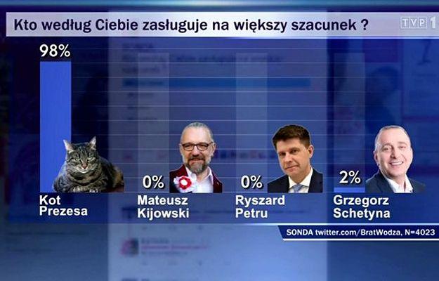 """""""Wiadomości"""" TVP pokazały sondę: kot prezesa zasługuje na większy szacunek niż Schetyna, Petru i Kijowski"""