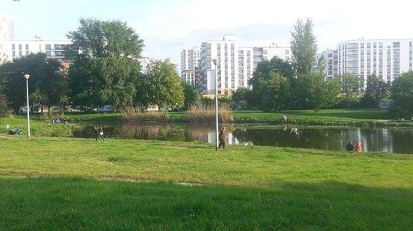 Jeziorko Gocławskie wciąż w prywatnych rękach. Nielegalnie?