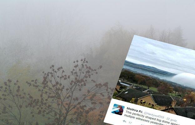 """Niezwykłe zjawisko pogodowe. Łąki przykryła ogromna biała """"kopuła"""""""