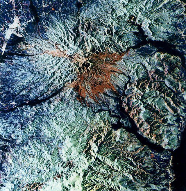 Pierwsze masowe wymieranie na Ziemi - zobacz