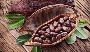 Kakaowiec - zdrowa i smaczna czekolada