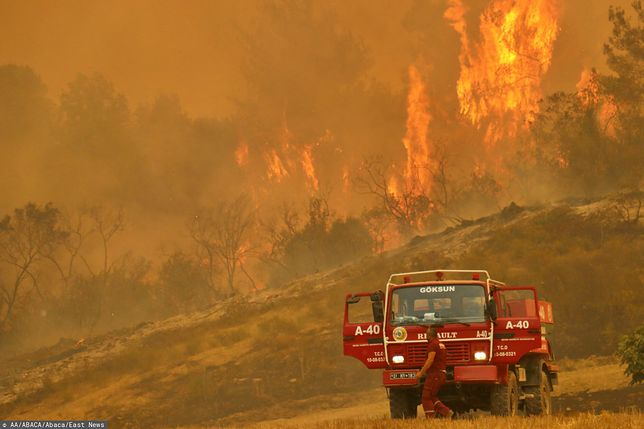 Ogromny pożar na południu Turcji. Zginęły cztery osoby