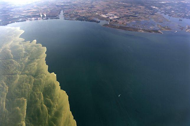 Naukowców zaniepokoiły zdjęcia jeziora Erie, które zostały wykonane przez satelitę