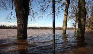 Poziom Wisły w rejonie Wyszogrodu przekroczył stan alarmowy