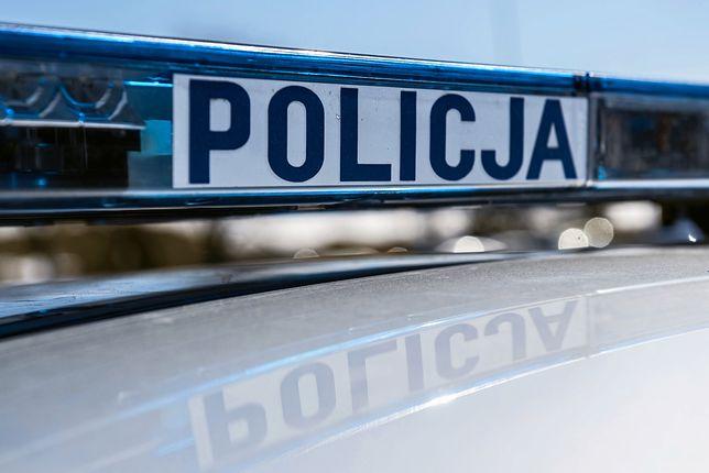 Jarogniewice. Tragiczna śmierć kierowcy po zderzeniu z danielem