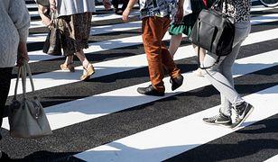 """Ratusz zadba o bezpieczeństwo pieszych. """"Walka toczy się o ludzkie życie"""""""