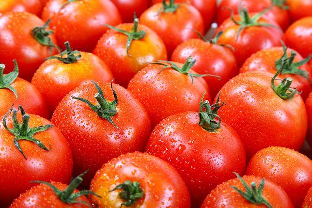 Sezon na pomidory trwa od kwietnia do października.