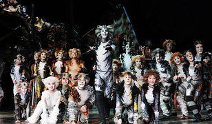 Gwiazdy Broadwayu z musicalem Cats w Polsce!