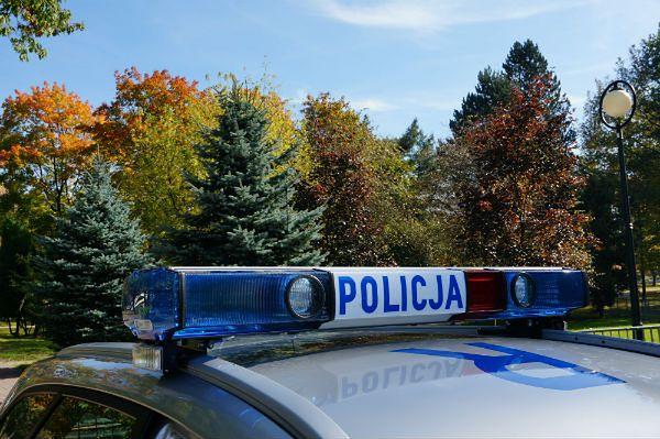Policja zatrzymała oszustkę. Ukrywała się z dzieckiem w lesie
