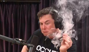 Elon Musk niedawno palił marihuanę na wizji