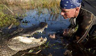 Everglades: w krainie komarów i aligatorów