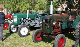 Stare traktory też mają duszę. Miłośnicy techniki rolniczej stanęli do konkursu w orce