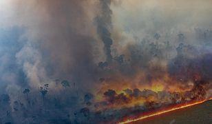 Amazonia. Prawie 4000 nowych pożarów na obszarze Brazylii w ciągu 48 godzin
