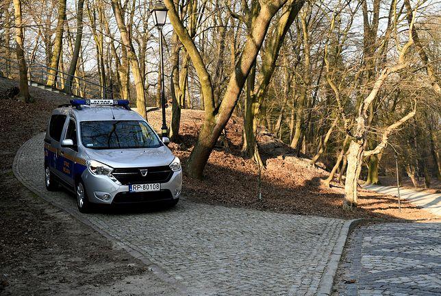Koronawirus w Polsce. Lasy Państwowe wprowadzają tymczasowy zakaz wstępu do lasów