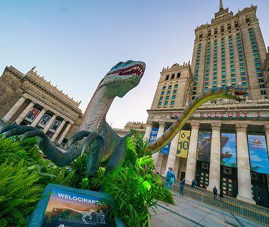 Dinozaury w stolicy!