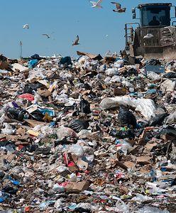 Podwyżki za wywóz śmieci porażają. Zużycie prądu możesz ograniczyć, ale z odpadami jesteś bez szans